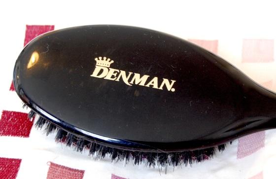 denman_porcupine